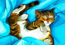 illustration-album-mia-0-68599000-1540997109