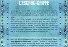 illustration-roman-les-pirates-de-lescroc-griffe-tome-2-les-feux-de-mortifice-0-89350700-1538137102
