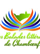 Salon du livre de Chamboeuf