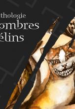 Anthologie Sombres Félins